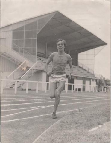 Dominique Chauvelier